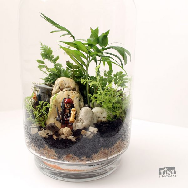 terrarium with Pirates of the Caribbean Minifigures