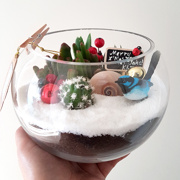 Succulent-Terrarium-Small-Fish-Bowl