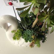 swan-succulent-planter2
