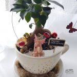 fairy garden pot belly fig planter cup and saucer