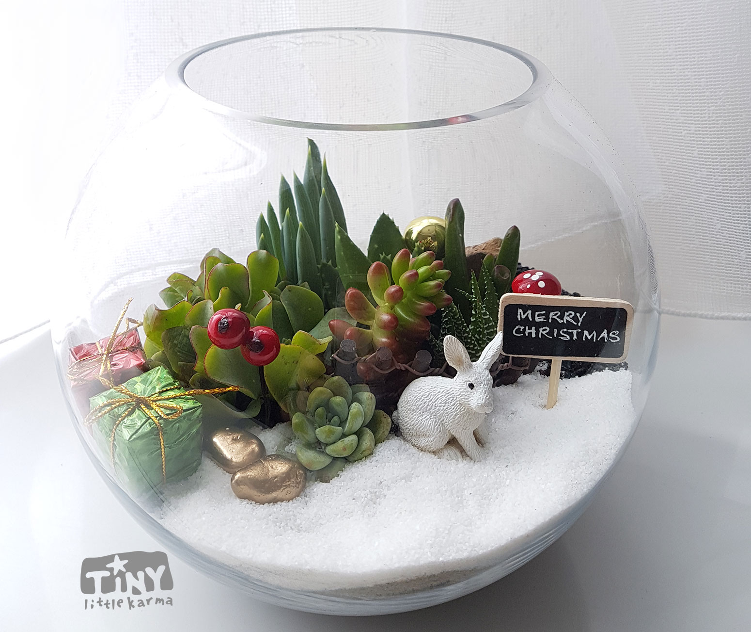 Fish Bowl Succulent Terrarium Tiny Little Karma