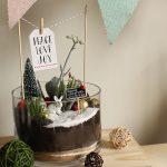 Christmas Theme Succulent Terrarium